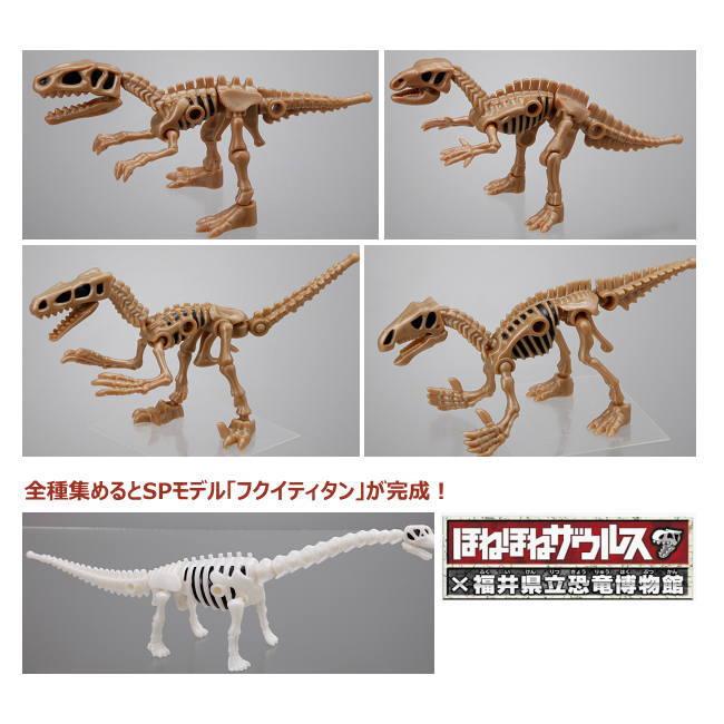 ほねほねザウルスX福井県立恐竜博物館EX